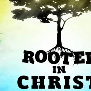 Rooted in Christ: Radical Gratitude